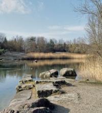 Irchelpark Helfenstein-Landscape Architecture-ETH Zürich-Prof. Girot