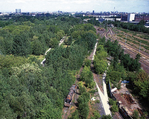 Kowarik-Berlin-Südgelände-Landscape Architecture-ETH Zürich-Prof. Girot