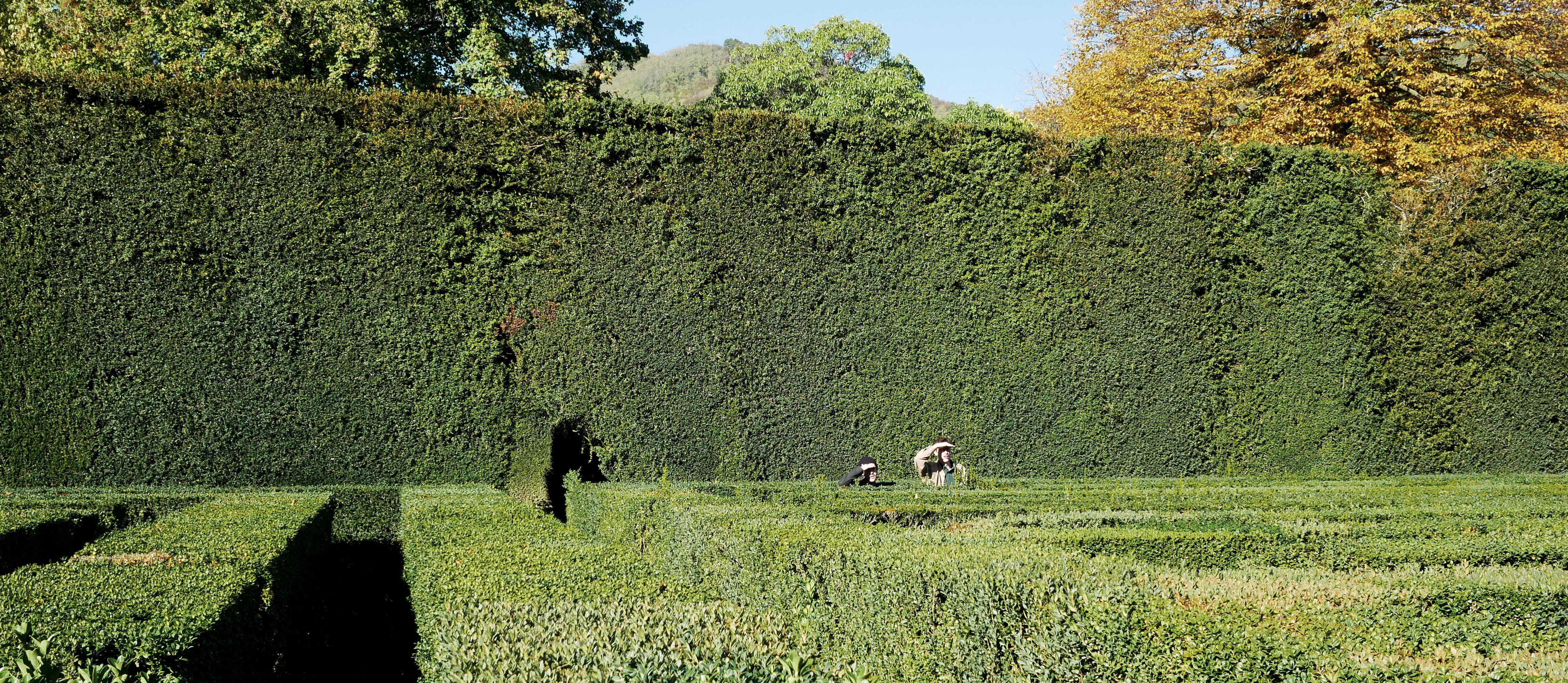 Theorylab-Landscape Architecture-ETH Zürich-Prof. Girot